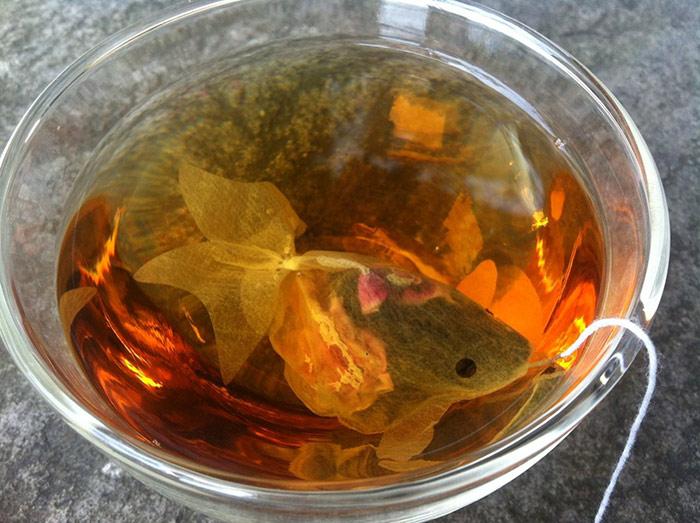 Goldfish Packaging